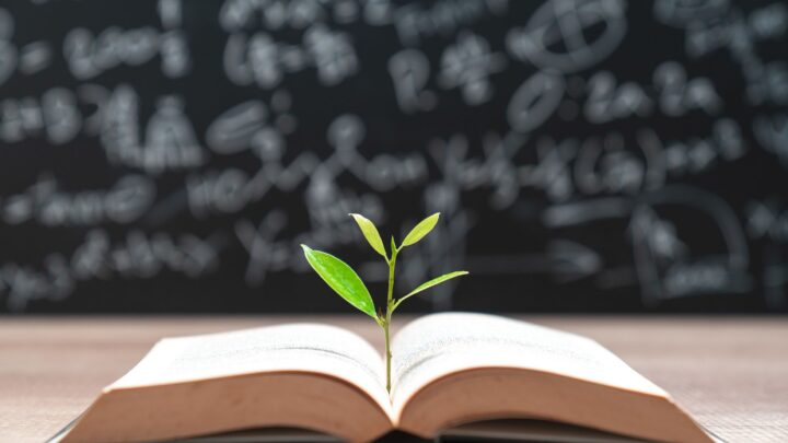 The roots of education and learning for lasting growth